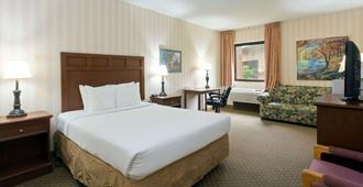 印第安纳波利斯西北戴斯酒店 - 印第安纳波利斯 - 睡房