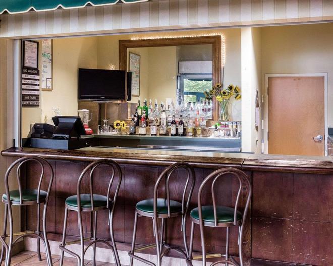 凯艺套房酒店-赖特湖诺福克机场 - 诺福克 - 酒吧