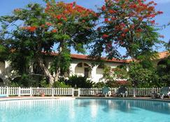 夏拉茵酒店 - 尼格瑞尔 - 游泳池