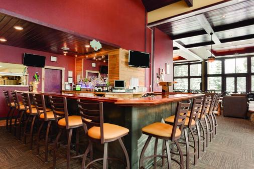 大木旅馆 - 布雷肯里奇 - 酒吧