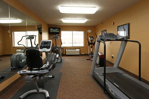 林肯新维多利亚套房酒店 - Lincoln - 健身房