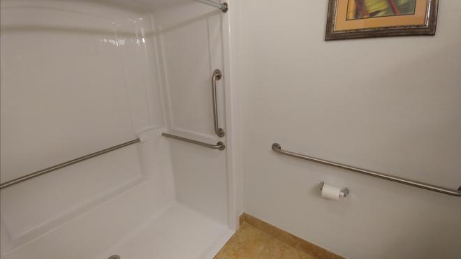 莱克兰戴斯套房酒店 - 莱克兰 - 浴室