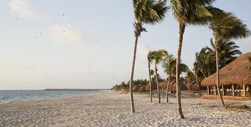 卓越集团最好普拉亚穆吉莱斯酒店 - 坎昆 - 海滩