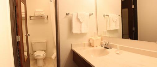 费尔布瑞芝套房汽车旅馆 - 爱达荷福尔斯 - 爱达荷福尔斯 - 浴室