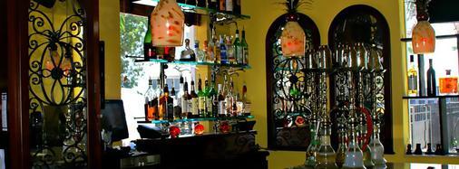 南海滩广场酒店 - 迈阿密海滩 - 酒吧