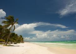 图卢姆海滩酒店 - 图卢姆 - 海滩