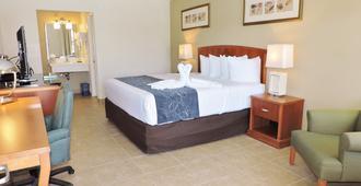 佛罗里达季节渡假酒店 - 基西米 - 睡房
