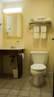 大使套房酒店 - 米德尔敦 - 浴室