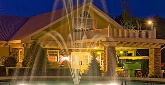 威廉斯上校度假及套房酒店 - 乔治湖 - 户外景观