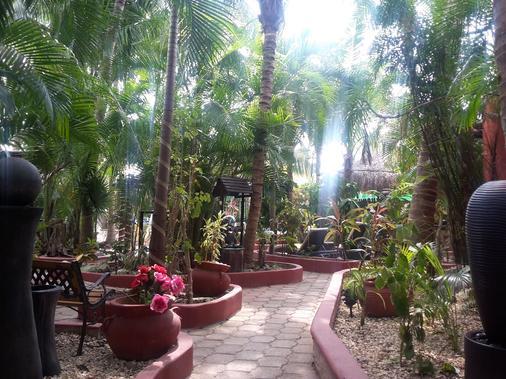 可可斯卡瓦尼亚斯 - Playa del Carmen - 户外景观