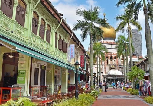 新加坡武吉士沉睡奇伟酒店 - 新加坡 - 户外景观