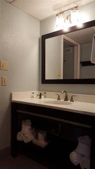 海豚滩度假酒店 - 圣彼得海滩 - 浴室
