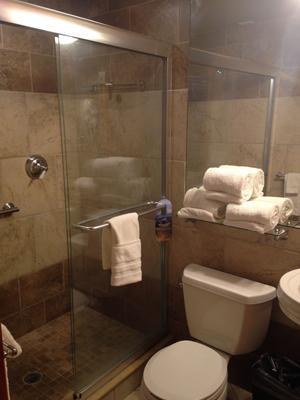 海德公园酒店 - 坦帕 - 浴室