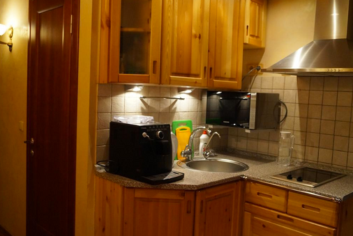 莫斯科贵族迷你酒店 - 莫斯科 - 厨房