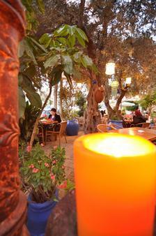 坦普勒斯精品酒店 - 海法 - 餐馆