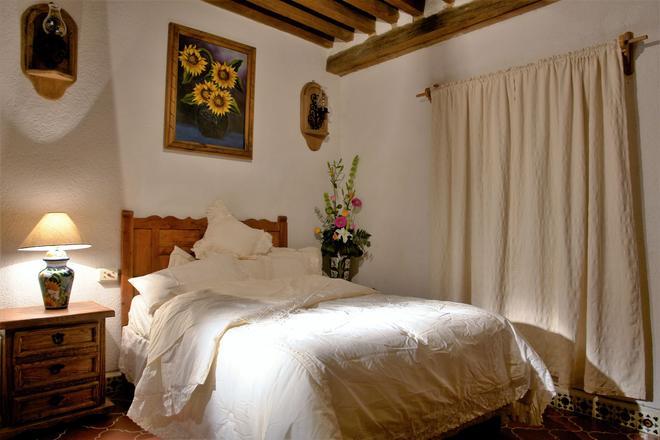 梅森德罗萨里奥酒店 - 瓜纳华托 - 露天屋顶