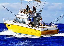 拉罗通加海滩度假村与泻湖水族馆 - 拉罗汤加岛