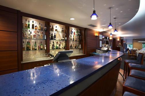 尔克斯庞巴尔酒店 - 里斯本 - 酒吧