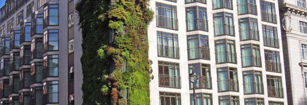 The Athenaeum Hotel & Residences - 伦敦 - 建筑