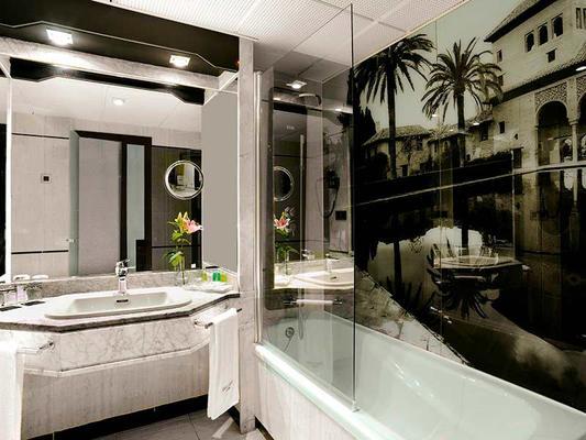 鲁纳德格拉纳达服务大酒店 - 格拉纳达 - 浴室