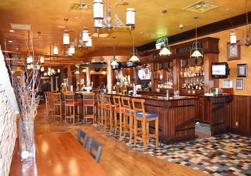 明尼阿波利斯西万豪酒店 - 明尼阿波利斯 - 酒吧