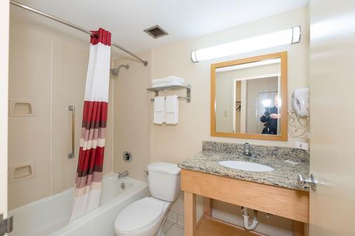 中央诺克斯维尔假日酒店 - 诺克斯维尔 - 浴室
