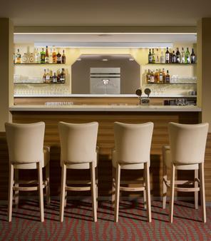 维罗纳2欧莱酒店 - 布尔诺 - 酒吧