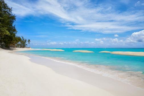 蓬塔卡纳巴瓦罗海滩阳光景致度假村 - 蓬塔卡纳 - 海滩