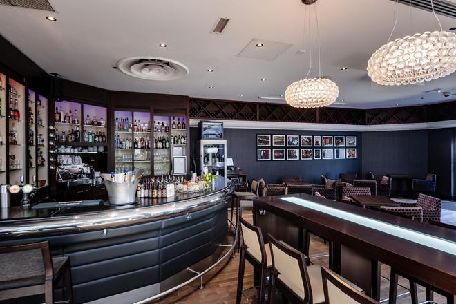 斯特拉斯堡希尔顿酒店 - 斯特拉斯堡 - 酒吧