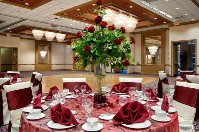 休斯顿哈比机场希尔顿逸林酒店 - 休斯顿 - 宴会厅