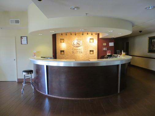 弗雷斯诺河滨公园舒适套房酒店 - 弗雷斯诺 - 柜台