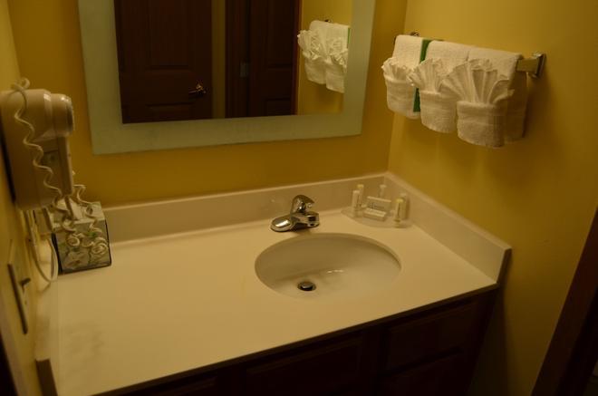 达拉斯普莱诺传统万豪唐普雷斯套房酒店 - 普莱诺 - 浴室