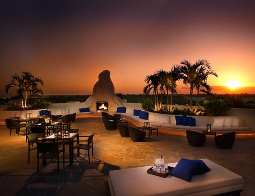 椰林梅菲尔酒店 - 迈阿密 - 露台