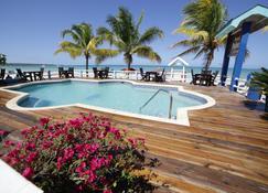 棕榈度假村 - 尼格瑞尔 - 游泳池