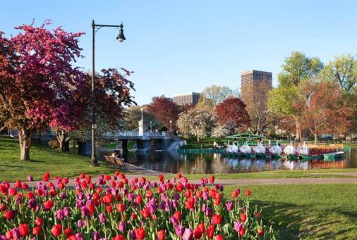 波士顿考泼利广场威斯汀酒店 - 波士顿 - 景点