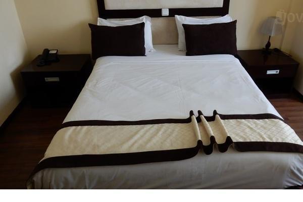 埃德娜亚迪斯酒店 - 亚的斯亚贝巴 - 睡房