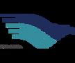 印度尼西亚鹰航空公司