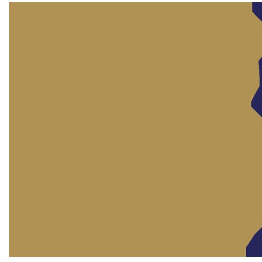 沙地阿拉伯航空
